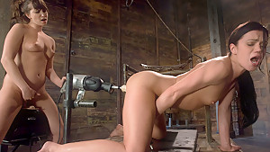 hot solo with toys