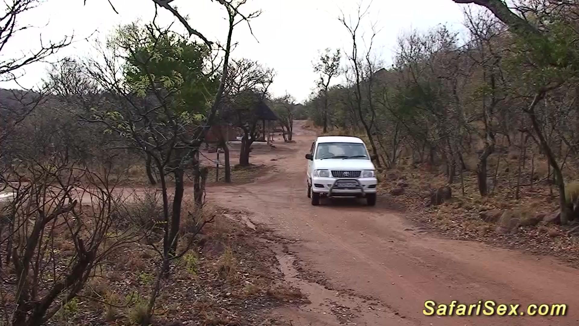 hot sex at my african safari trip